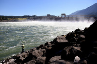 Pikeminnow Bounty Program Alive and Well at Bonneville Dam