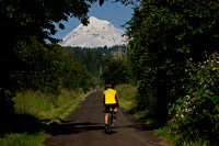 Springwater Corridor bike path with Mt. Hood in the distance