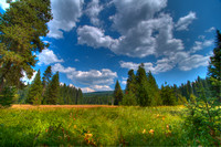 Sally's Meadow, near Little Crater Lake