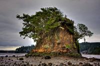 Tree Island, near North Bend, OR